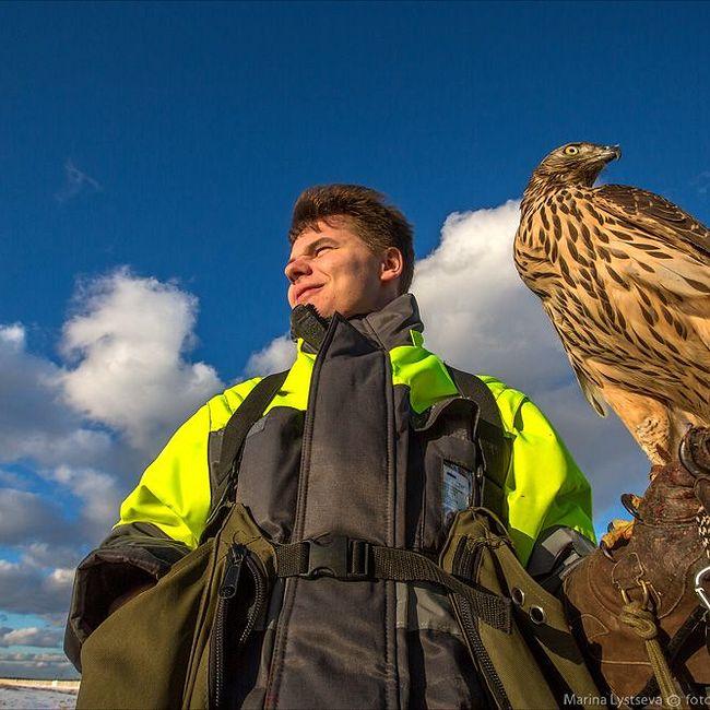 Как устроена орнитологическая служба