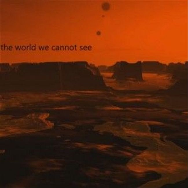 095 : the world we cannot see