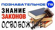 Знание законов ОСВОБОЖДАЕТ от отвественности (Познавательное ТВ, Евгений Пупырин)