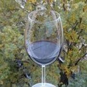 Путь вина: зачем нужны сера ибелок? (61)