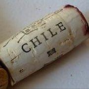 Чилийское вино: победа цены и качества (71)