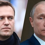 Навальный пригрозил Путину организацией всеобщего бойкота выборов