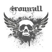 Железная Стена— 6 (6)