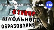 Ступор школьного образования (Познавательное ТВ, Михаил Величко)