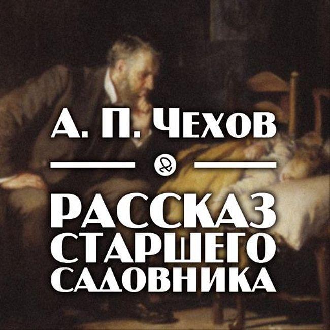 """А. П. Чехов """"Рассказ старшего садовника"""""""