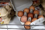 Девяток яиц стал провокацией западных СМИ для дискредитации власти в России