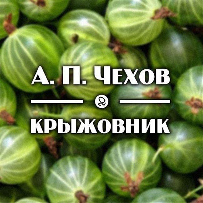 """А. П. Чехов """"Крыжовник"""""""