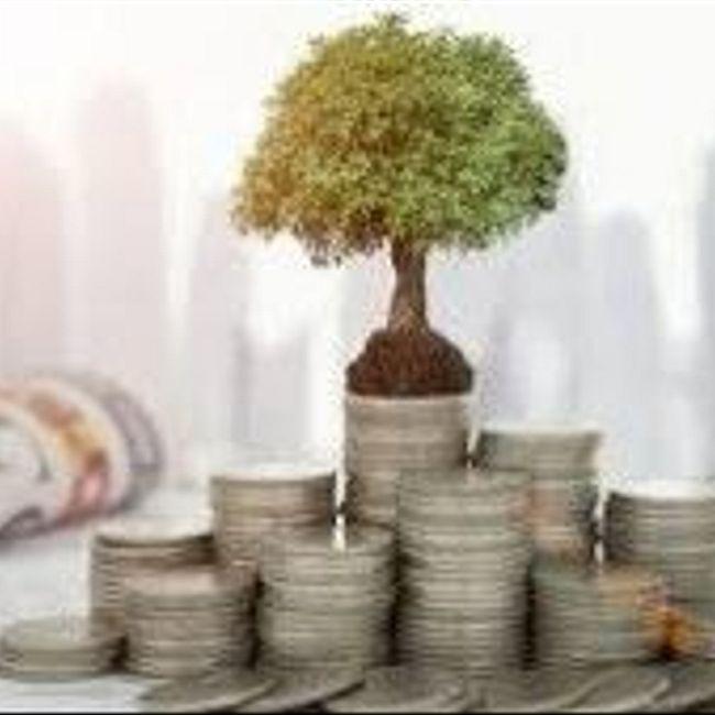 Инвестиционные инструменты - надежные, ликвидные и доходные - особенности, порядок покупки и правила сочетания в портфеле.
