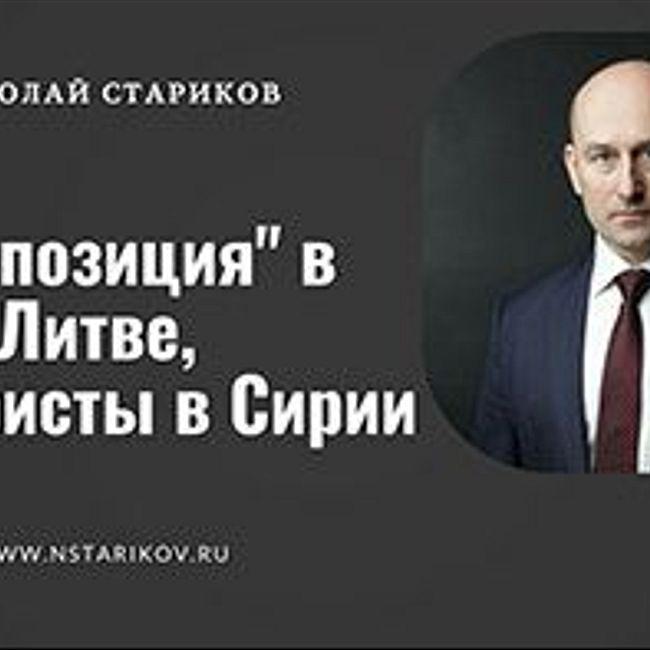 """Николай Стариков: """"Оппозиция"""" в Литве, террористы в Сирии"""