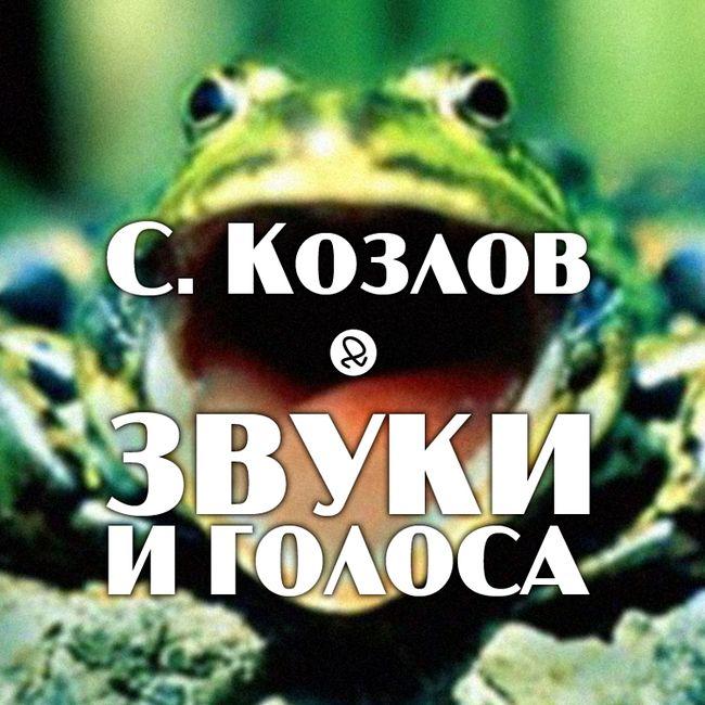 "С. Козлов ""Звуки и голоса"""