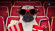 Афиша: кинопремьеры этой недели