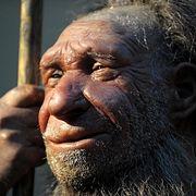 """Неандертальцы не были безрассудными """"берсерками"""""""