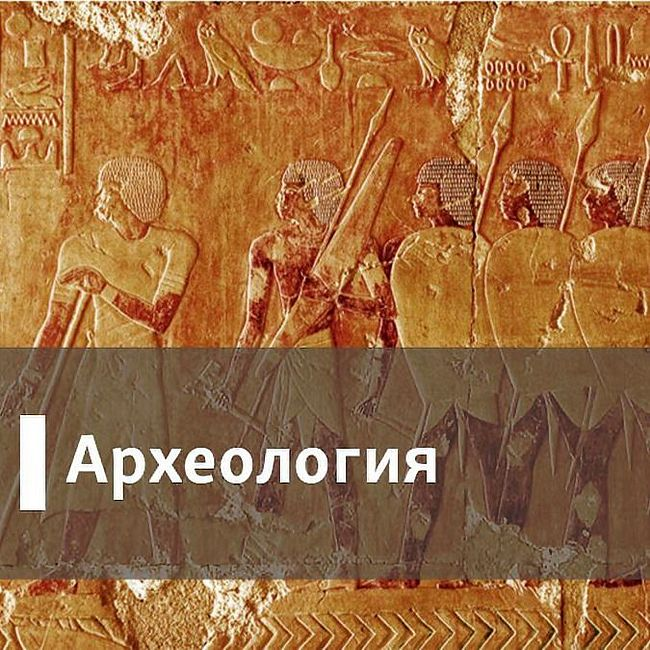 Археология. Медведи за клавиатурой - 22 Январь, 2017