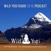 Wild Yogi Radio