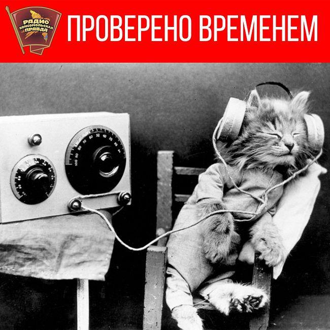 Музыканту «Машины времени» Александру Кутикову 60!
