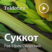Рав Ефим Свирский — Суккот